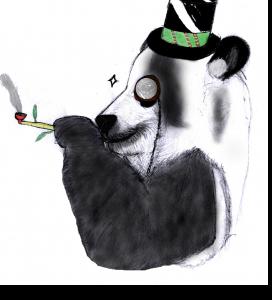 Sir Panda haut en couleurs